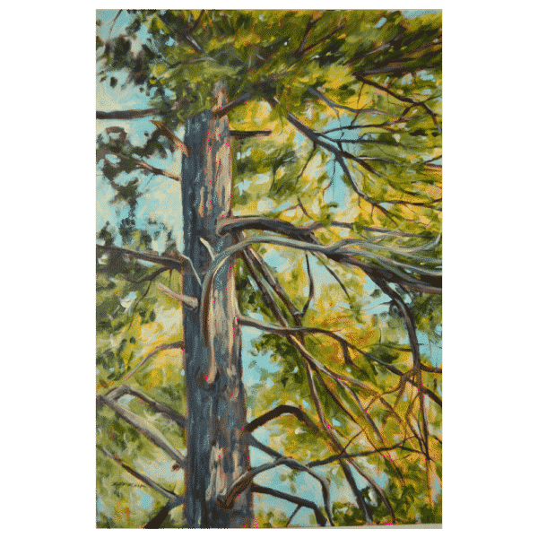 Tunnel Island Tree 24 x 32 Painting by Tammy Zebruck