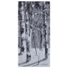 Birch Trees II 10x20 by Doris Pontieri