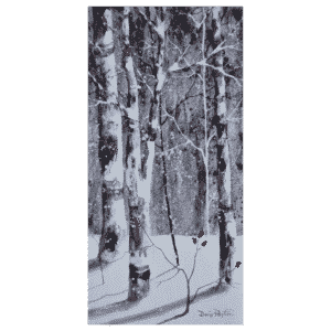 Birch Trees II 10x20 by Doris Pontieri