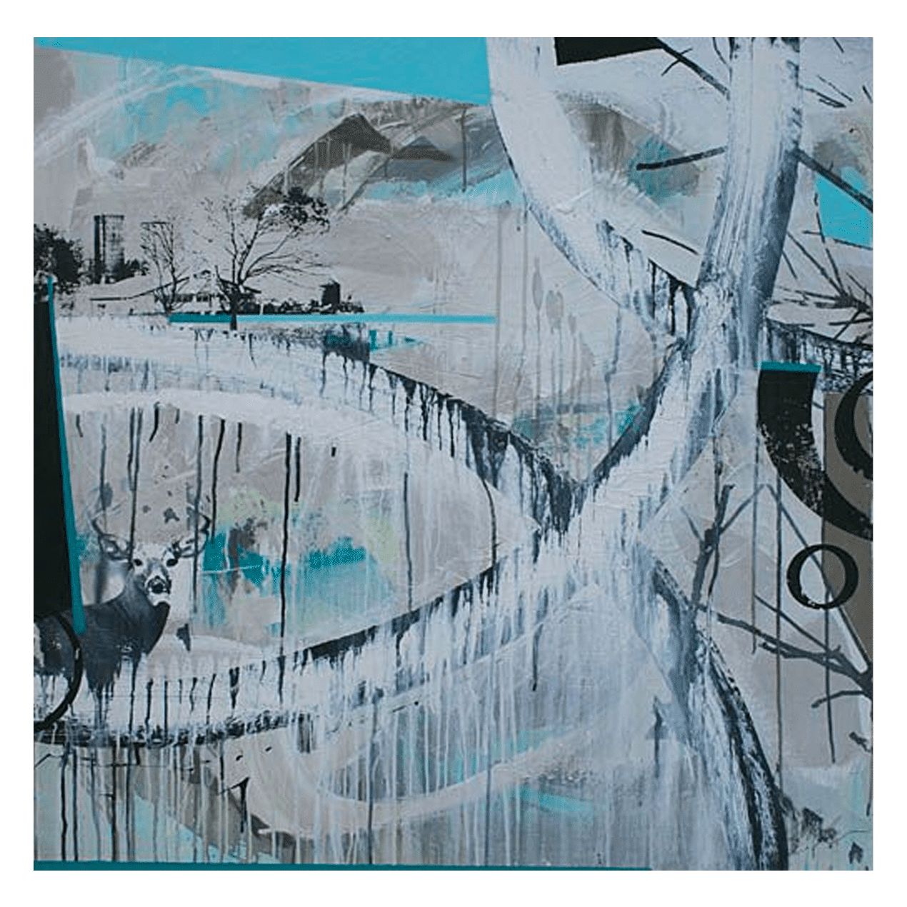 Shane Norrie W 36' x H 36' Mixed Media on Panel