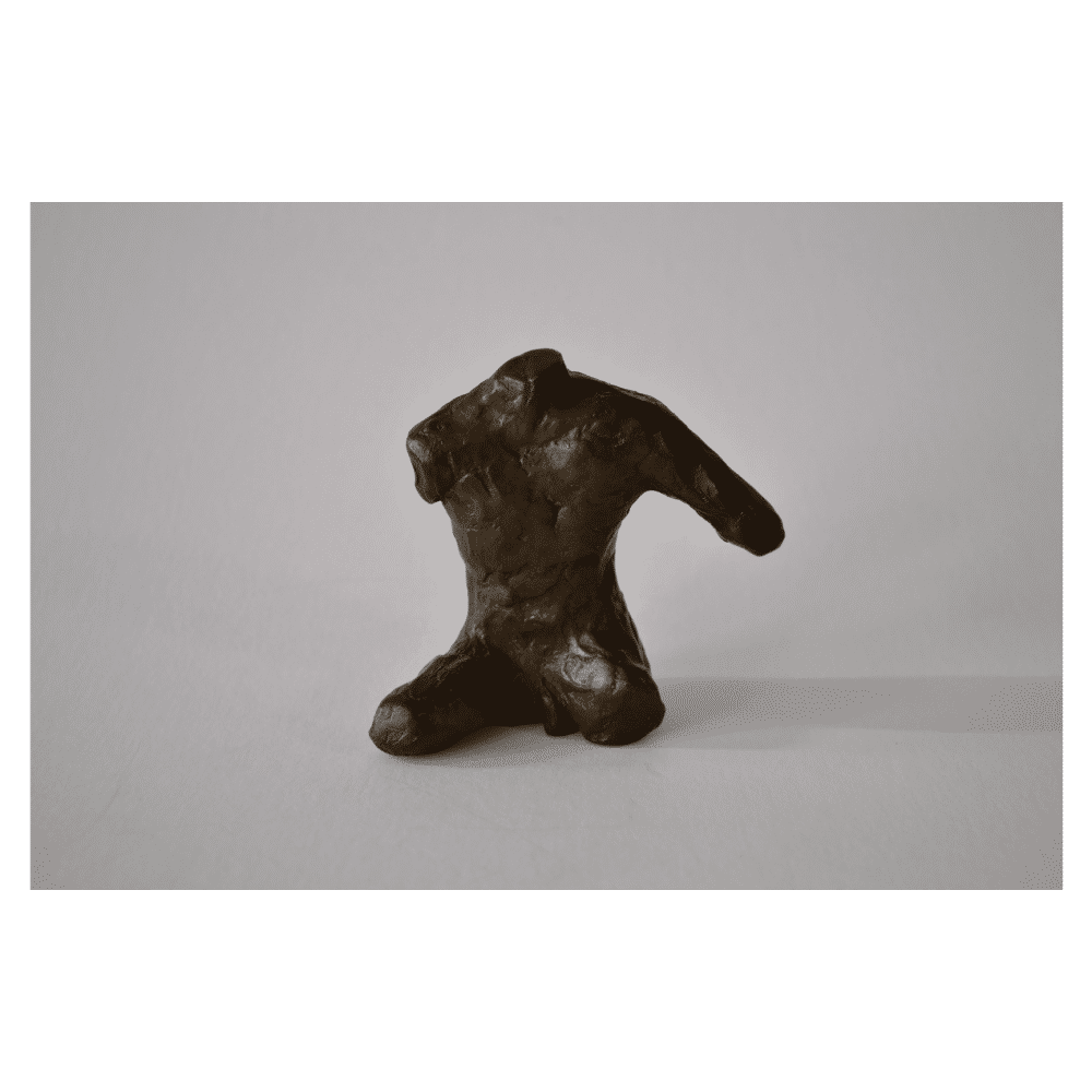 Small Male Torso by John Books